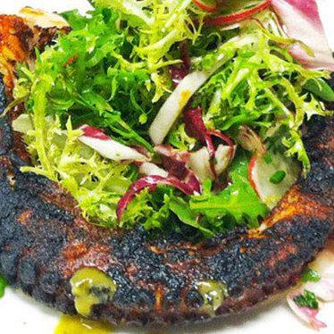 Grilled mediterranean octopus at Cucina Enoteca