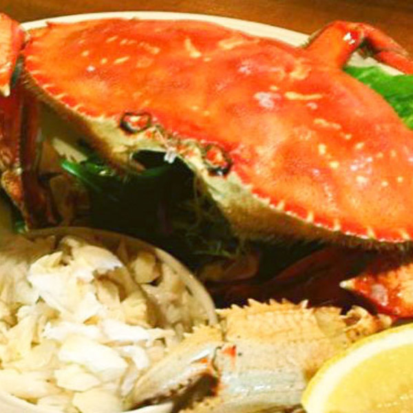 Medium the fishery whole dungeness crab