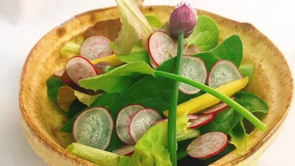Radish, young lettuces, handmade bowl at Chef Shack Bay City, WI