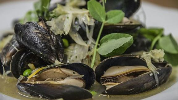 Mussels, peas, pea shoots, white wine at The Tasting Kitchen