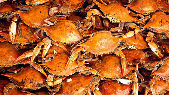Boiled whole blue crabs at Bayou Boys Cajun Specialty