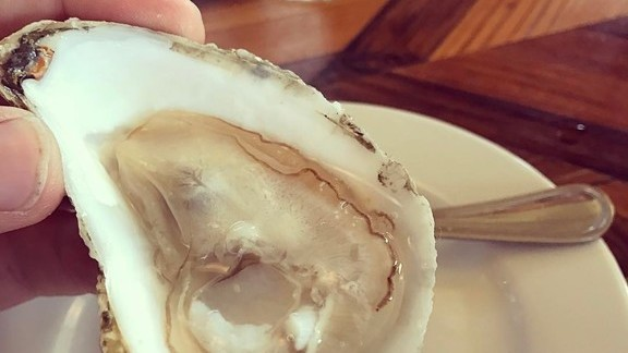 Glidden Points Oyster at Kimball House