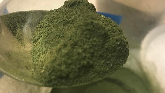 Chef Paul Fehribach reviews Fresh ground sassafras powder at Big Jones