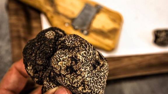 Black truffles at Michael Mina