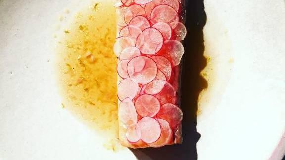 Salmon | radish | bergamot at Tullibee