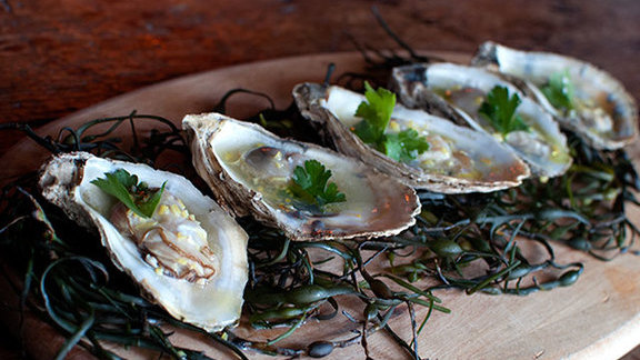 Grilled seasonal oysters at The Lion's Share