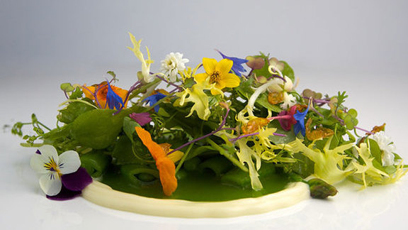 Chef William Belickis reviews Seasonal salad at