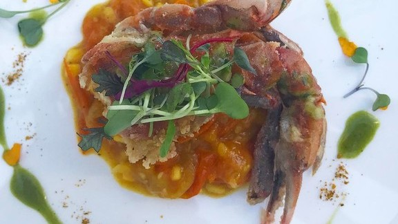Tomatoes with crab, cilantro sauce, mango, and curry at CAVATINA at Sunset Marquis