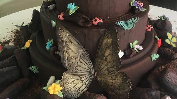 Chocolate cake with butterflies at La Duni Latin Kitchen & Coffee Studio