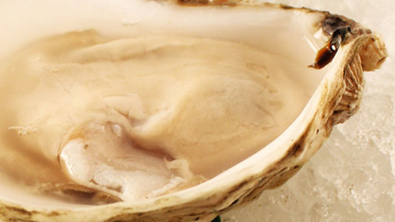 Chef Joshua Breen reviews Naked oysters at