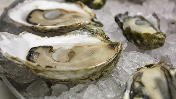 Oysters on the half shell at Swan Oyster Depot