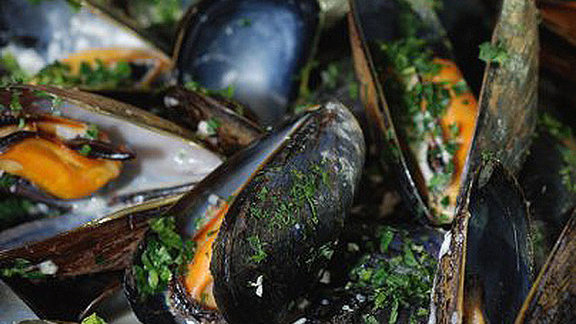 Chef Mike Isabella reviews Mussels w/ fennel & chorizo at
