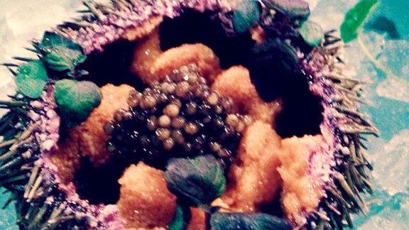 Chef Staffan Terje reviews Live sea urchin & caviar at Akiko's Restaurant & Sushi Bar