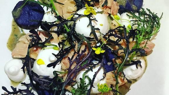 Foie gras, truffles, potatoes, mustard frill, bok choy blossom, migas, tarragon, thyme at Wolf
