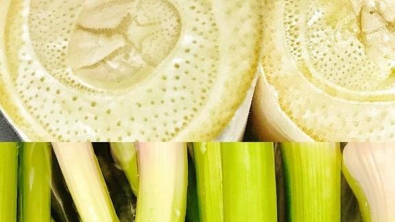 Fresh Heart of Palm and Garlic Greens at Zen Box Izakaya