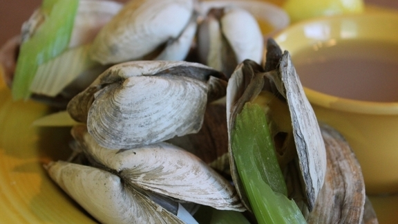 Fresh steamers at Summer Shack