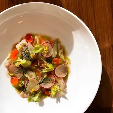 Razor clam crudo: tomato vinaigrette, celery, lovage oil, radish, rhubarb at Restaurant St Jack