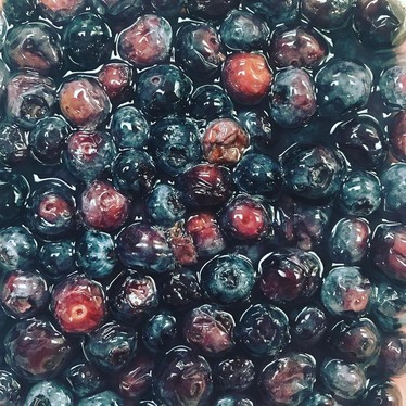Fermented blueberries at Monello