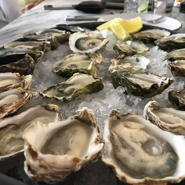 Oysters on ice at Henrietta Red