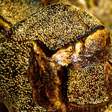 Sesame bread at Tartine Bakery