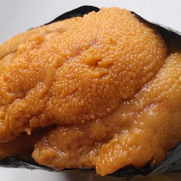 Sea urchin at Zama