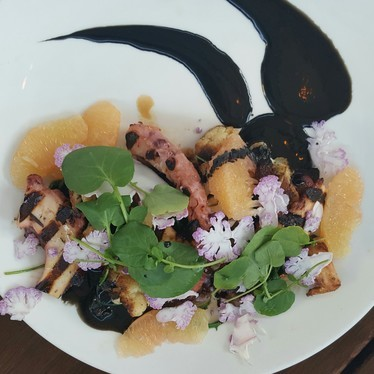 Grilled octopus, cauliflower, marcona almonds, grapefruit and squid ink vinaigrette  at The Lark