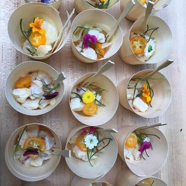 Habanero flounder ceviche with kumquats and edible flowers  at Copita Tequileria y Comida