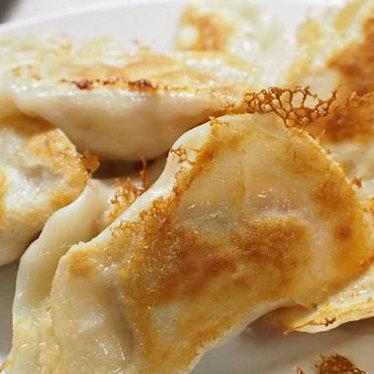 Dumplings at Luscious Dumplings
