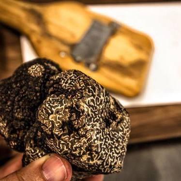 Black truffles at Michael Mina