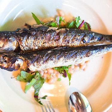 Monterey Bay sardines at Cotogna