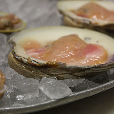 Clams on the half shell at Swan Oyster Depot