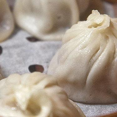 Dumplings at Cheu Noodle Bar