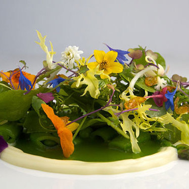 Seasonal salad at Canlis
