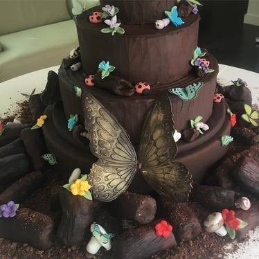 Chocolate cake with butterflies at La Duni Latin Cafe