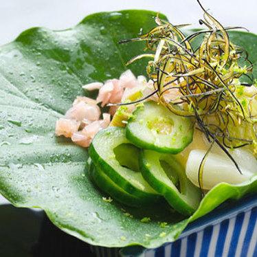 Seasonal special menu at Kajitsu