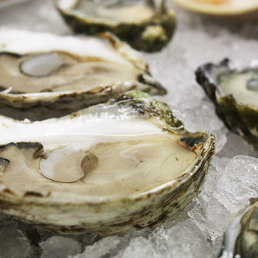 Oysters on the half shell at Neptune Oyster