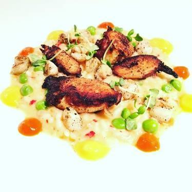 Charred Portuguese octopus, bay scallops, fennel risotto, English peas, Spanish chorizo at Wildwood Kitchen