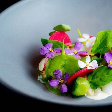 Radish, geoduck clam, cucumber, lardo, buttermilk, wildflowers at Lazy Bear