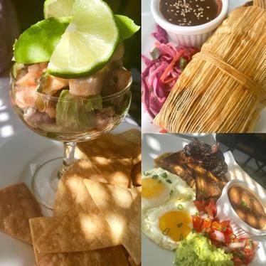 Ceviche, mole tamal, and brisket at El Pavo Real