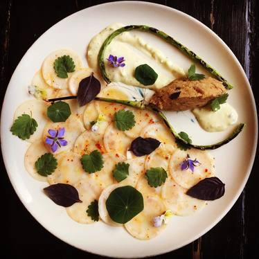 "Turnip ""carpaccio,"" charred garlic, pork rillettes, gribiche, herbs, flowers at Rebel Restaurant"