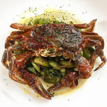 Pan-roasted soft shell crab, asparagus and fava bean ragù, charred garlic scallion and caper aioli at Le Virtù