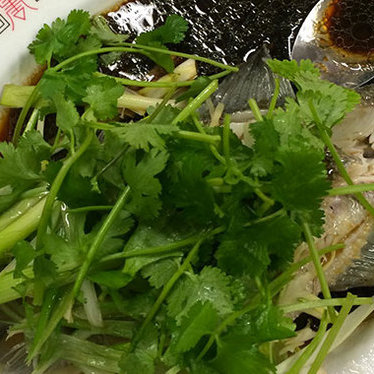 Steamed sea bass at Yuet Lee