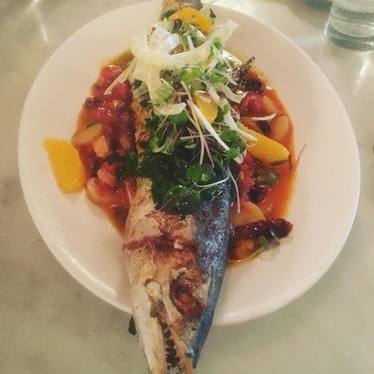 Atlantic mackerel at Neptune Oyster