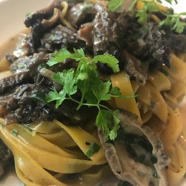 Morels with pasta at Sartoria