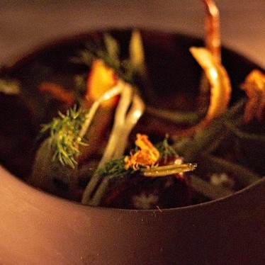 Roasted carrot and fennel salad with fared, labneh, pistachio and espresso at The Douglas Room