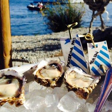 Oysters at Westward