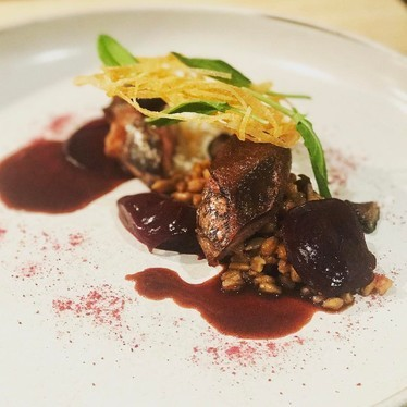 Squab, beets, faro, sunflower seeds, and sorrel at Volt