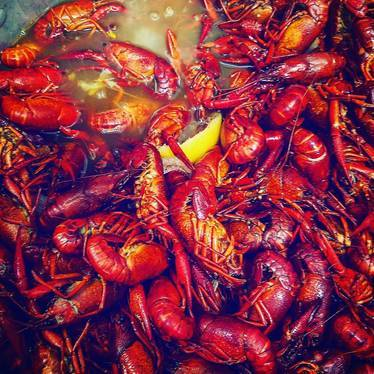 Crawfish boil at Heaven on Seven