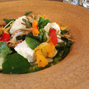Green farro at Aster